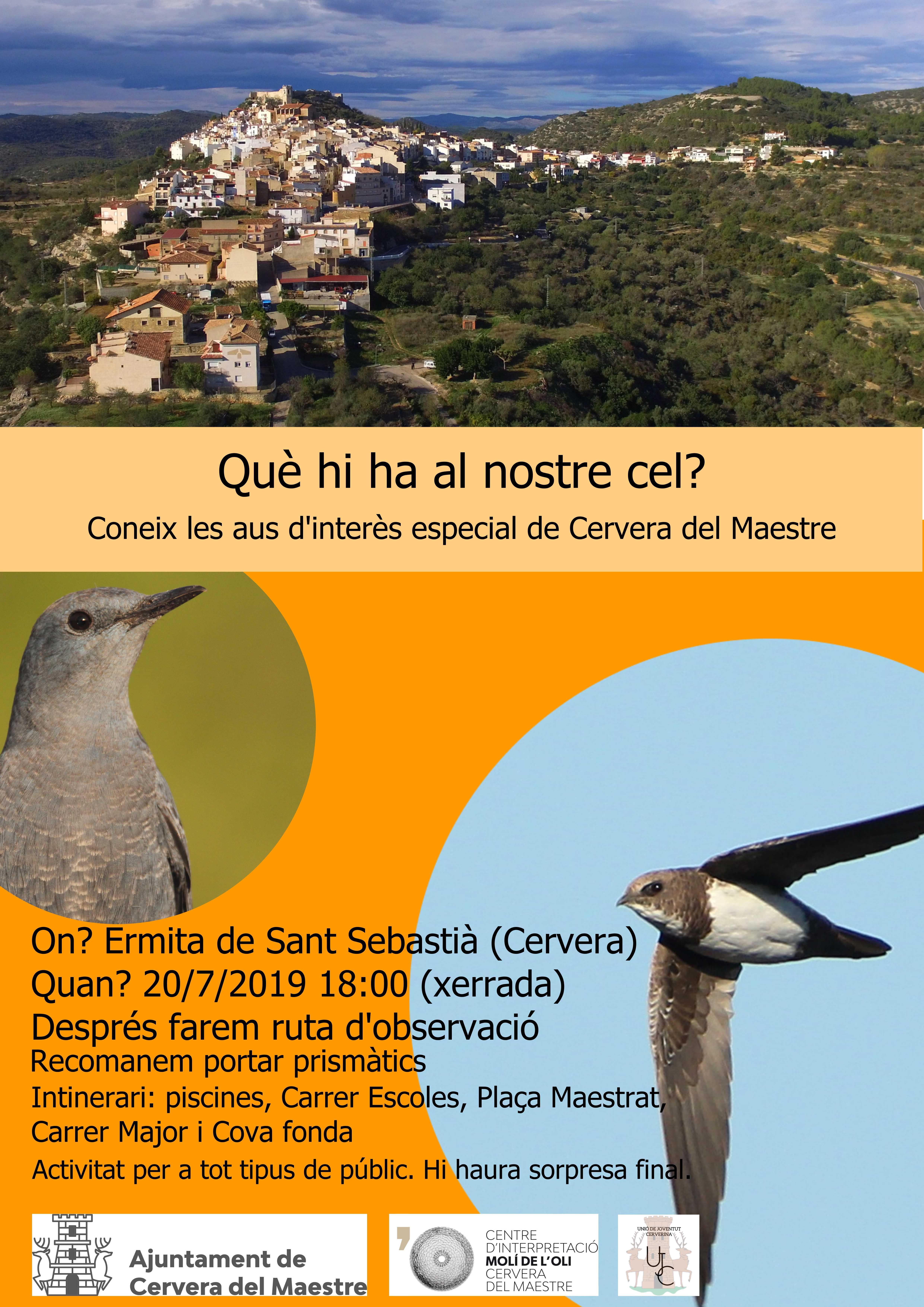 cartell activitat birdwatching (baixa)